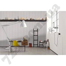 Интерьер Black & White 3 Артикул 303972 интерьер 8