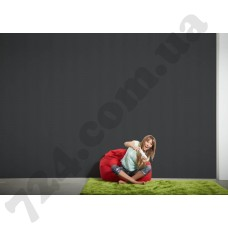 Интерьер Black & White 3 Артикул 256027 интерьер 7