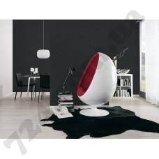 Интерьер Black & White 3 Артикул 301775 интерьер 1