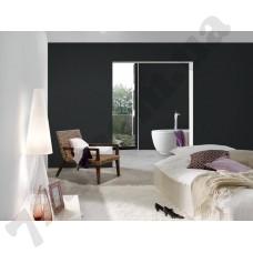 Интерьер Black & White 3 Артикул 301775 интерьер 8