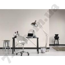 Интерьер Black & White 3 Артикул 301635 интерьер 6