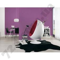 Интерьер Styleguide Jung Артикул 959594 интерьер 1