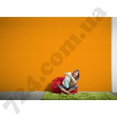 Интерьер Styleguide Jung Артикул 956586 интерьер 8