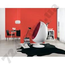 Интерьер Styleguide Jung Артикул 956587 интерьер 3