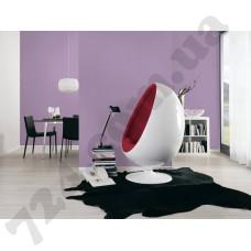 Интерьер Styleguide Jung Артикул 238832 интерьер 1