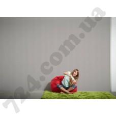 Интерьер Styleguide Design Артикул 256065 интерьер 7