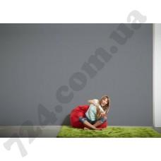 Интерьер Styleguide Design Артикул 301628 интерьер 6