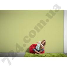 Интерьер Styleguide Design Артикул 301488 интерьер 6