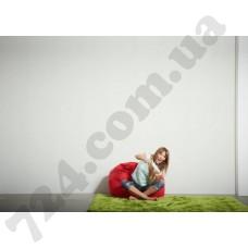 Интерьер Styleguide Design Артикул 301481 интерьер 6