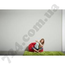 Интерьер Styleguide Design Артикул 301491 интерьер 6