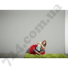 Интерьер Styleguide Design Артикул 301489 интерьер 6