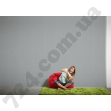 Интерьер Styleguide Klassisch Артикул 293022 интерьер 7