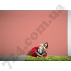 Интерьер Colourfast Артикул 959571 интерьер 6