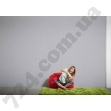 Интерьер Colourfast Артикул 959557 интерьер 6