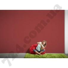 Интерьер Colourfast Артикул 959568 интерьер 6
