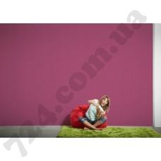 Интерьер Colourfast Артикул 959584 интерьер 6