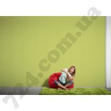 Интерьер Colourfast Артикул 959631 интерьер 6