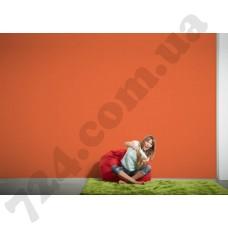 Интерьер Colourfast Артикул 959607 интерьер 6