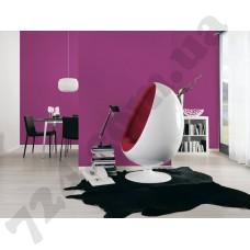 Интерьер Colourfast Артикул 959608 интерьер 1