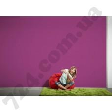 Интерьер Colourfast Артикул 959608 интерьер 6