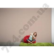 Интерьер Colourfast Артикул 959591 интерьер 6