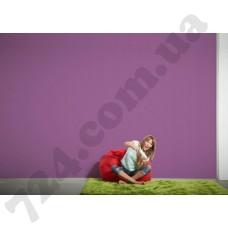 Интерьер Colourfast Артикул 959594 интерьер 6