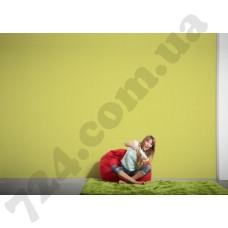 Интерьер Colourfast Артикул 959595 интерьер 6