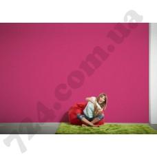 Интерьер Styleguide Colours 16 Артикул 956584 интерьер 7