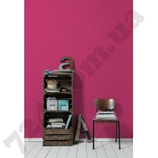 Интерьер Styleguide Colours 16 Артикул 956584 интерьер 8