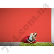 Интерьер Styleguide Colours 16 Артикул 956587 интерьер 8