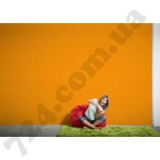 Интерьер Styleguide Colours 16 Артикул 956586 интерьер 8