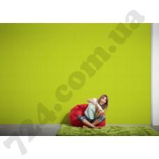 Интерьер Styleguide Colours 16 Артикул 956582 интерьер 7