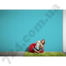 Интерьер Styleguide Colours 16 Артикул 956581 интерьер 7