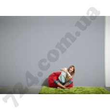 Интерьер Styleguide Colours 16 Артикул 956579 интерьер 7