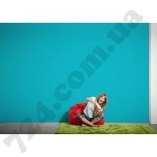 Интерьер Styleguide Colours 16 Артикул 944445 интерьер 6