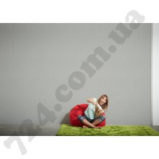 Интерьер Styleguide Colours 16 Артикул 937901 интерьер 6