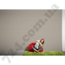 Интерьер Styleguide Colours 16 Артикул 211712 интерьер 7