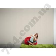 Интерьер Styleguide Colours 16 Артикул 937676 интерьер 7