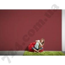Интерьер Styleguide Colours 16 Артикул 249463 интерьер 7