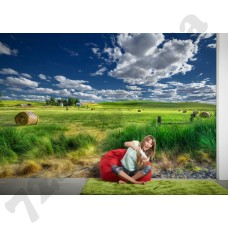 Интерьер AP Digital 2 Артикул 470450 интерьер 4