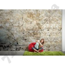 Интерьер Wallpaper Артикул 036730 интерьер 4