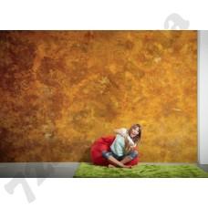 Интерьер Wallpaper Артикул 036790 интерьер 4