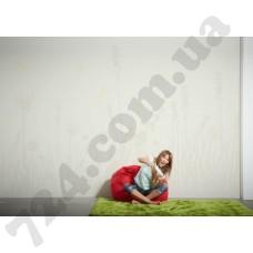 Интерьер Wallpaper Артикул 036900 интерьер 4