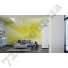 Интерьер Wallpaper Артикул 036920 интерьер 2