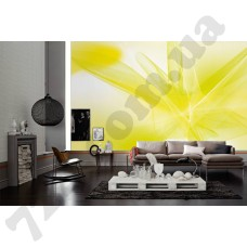 Интерьер Wallpaper Артикул 036920 интерьер 6