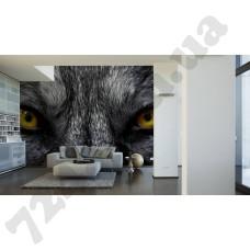 Интерьер Eyecatcher Артикул 036090 интерьер 2