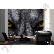 Интерьер Eyecatcher Артикул 036090 интерьер 3