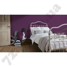 Интерьер White & Colours Артикул 132024 интерьер 4