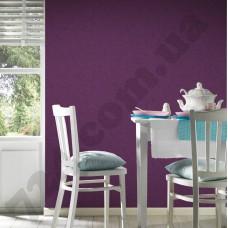 Интерьер White & Colours Артикул 132024 интерьер 6