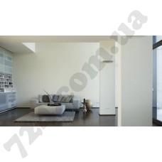Интерьер White & Colours Артикул 132154 интерьер 5